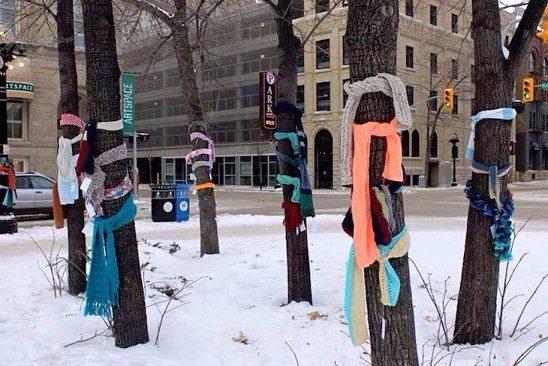 Zawiąż swój szalik na drzewo!